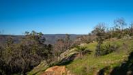 Echidna Trail-27.jpg