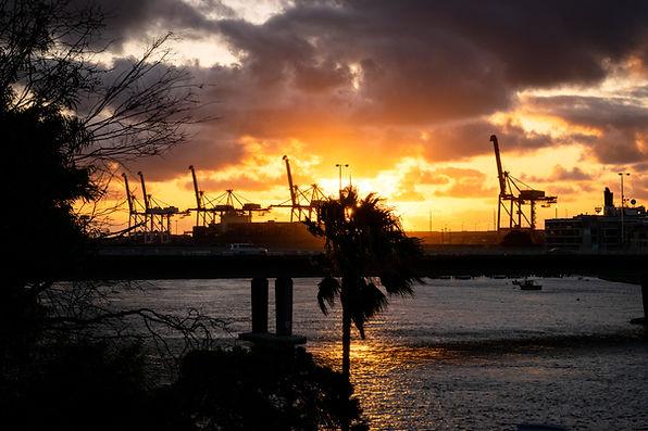 East Fremantle River Walk-84.jpg