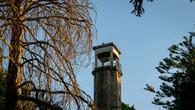 Wombat Hill-28.jpg