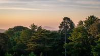 Wombat Hill-58.jpg