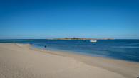 Penguin Island-15.jpg