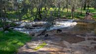 Noble Falls-17.jpg