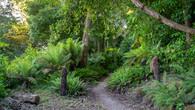 Wombat Hill-16.jpg