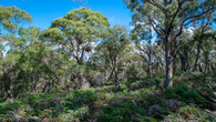Bay of Fires - Day Four-51.jpg