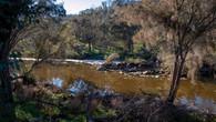 Echidna Trail-5.jpg