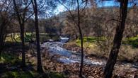 Echidna Trail-11.jpg