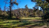 Echidna Trail-10.jpg