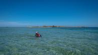 Penguin Island-79.jpg