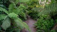 Wombat Hill-15.jpg
