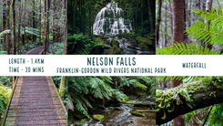 Nelson Falls.png