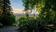 Wombat Hill-38.jpg