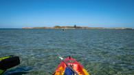 Penguin Island-18.jpg