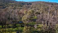 Echidna Trail-15.jpg