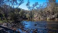 Echidna Trail-45.jpg