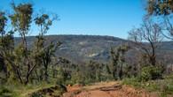 Echidna Trail-44.jpg