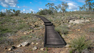 Numbat Trail-109.jpg