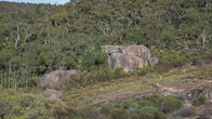 Railway Reserves HT-63.jpg