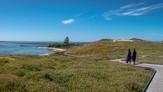 Penguin Island-55.jpg