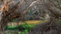 Victoria Reservoir-61.jpg