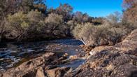 Echidna Trail-4.jpg