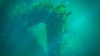 Omeo Wreck-45.jpg