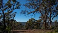 Echidna Trail-29.jpg