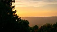Wombat Hill-56.jpg