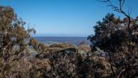 Echidna Trail-33.jpg