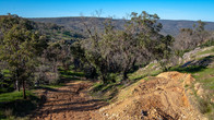 Echidna Trail-26.jpg