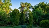 Wombat Hill-4.jpg
