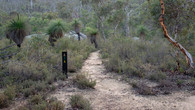 Numbat Trail-48.jpg