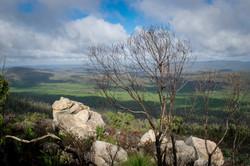 Mt Cooke Bibbulmun Track