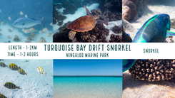 Turquoise Bay.png