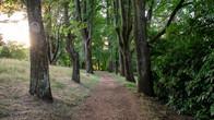 Wombat Hill-30.jpg