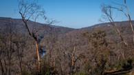 Echidna Trail-16.jpg