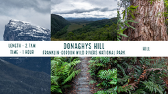Donaghys Hill.png