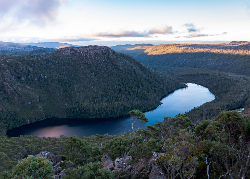 A Guide to Mount Field National Park