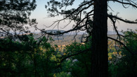 Wombat Hill-31.jpg