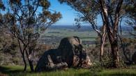 Echidna Trail-38.jpg