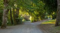 Wombat Hill-10.jpg