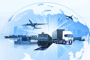 Trade and Customs Operations.jpg