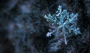 Método del copo de nieve