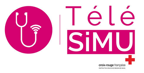 Logo_TeleSimu2.jpg