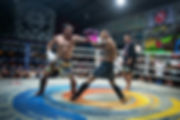 Fight night pic  2.jpg