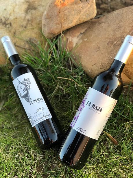 Bodegas Manuel Carreño | Vino Tinto | Recolección Vino