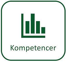Kompetence icon.jpg