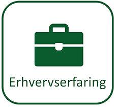 Erhvervserfaring icon.jpg