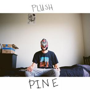 Pllush - WAYN