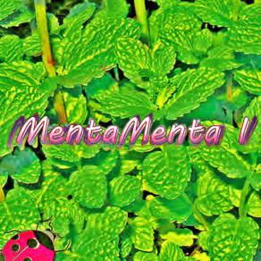 MentaMenta - paciencia