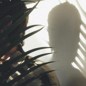 Past Palms - Senescence